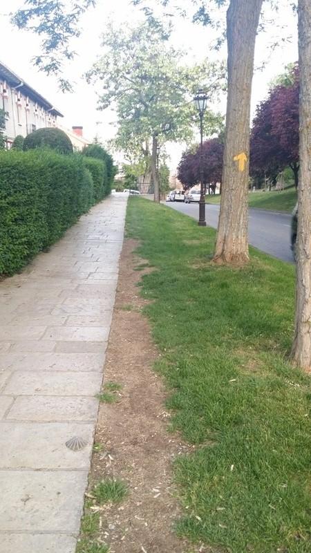 Walking from Burgos to Hornillos