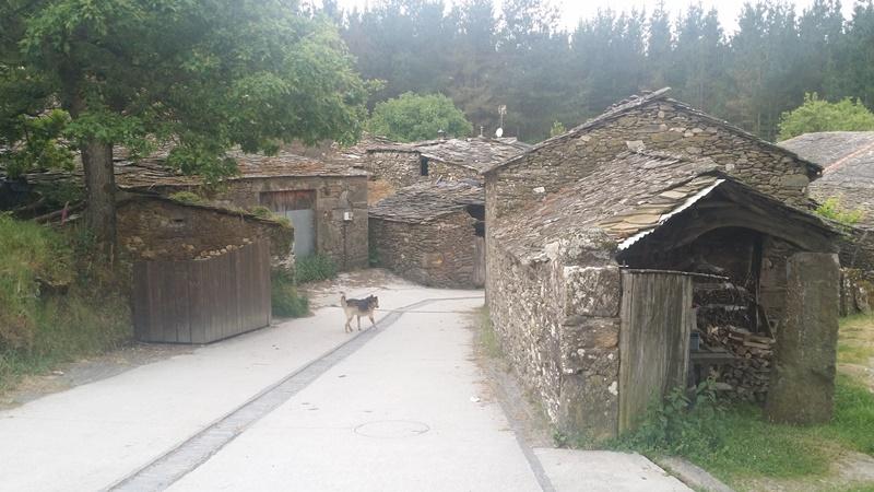Triacastela to Sarria