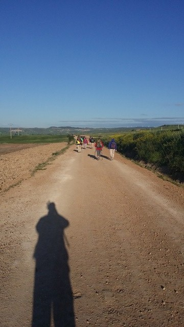 Walking from Viana to Logrono