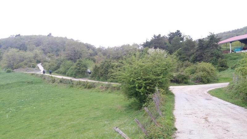 Walking from Viscarret to Zubiri