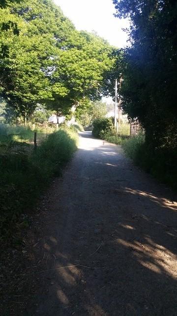 Walking from Melide to Arzua
