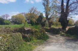 28th of April – Camino Day 1 from Sarria