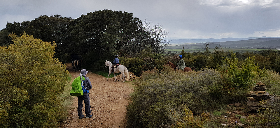 Alto del Perdon Horseback Riding