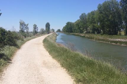 19th of May – Is my Camino over? Walking to El Burgo Ranero