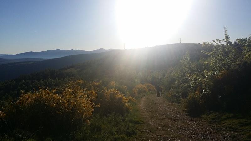 Walking from O Cebreiro to Triacastela