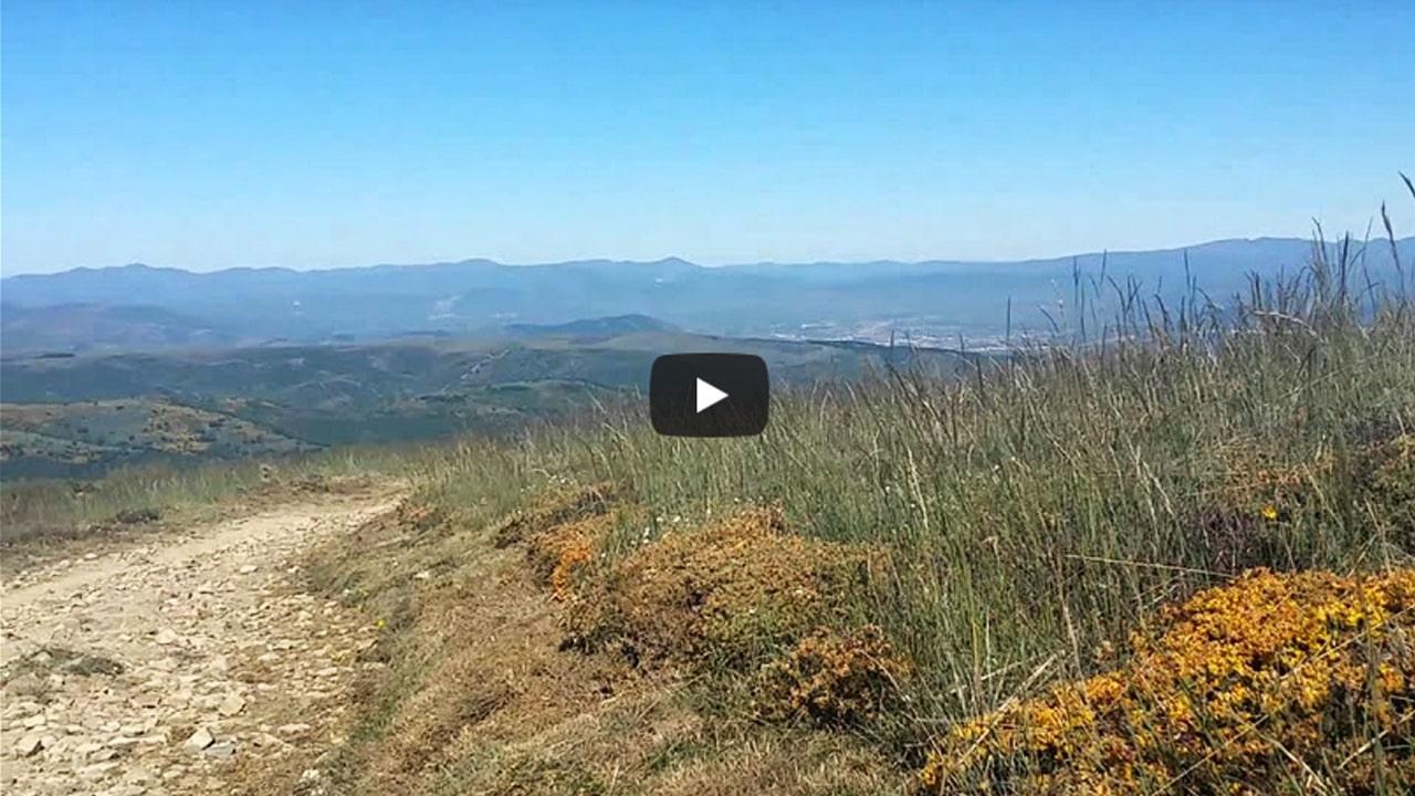 Fixing Legs – Camino de Santiago – Foot and Leg Care is Essential