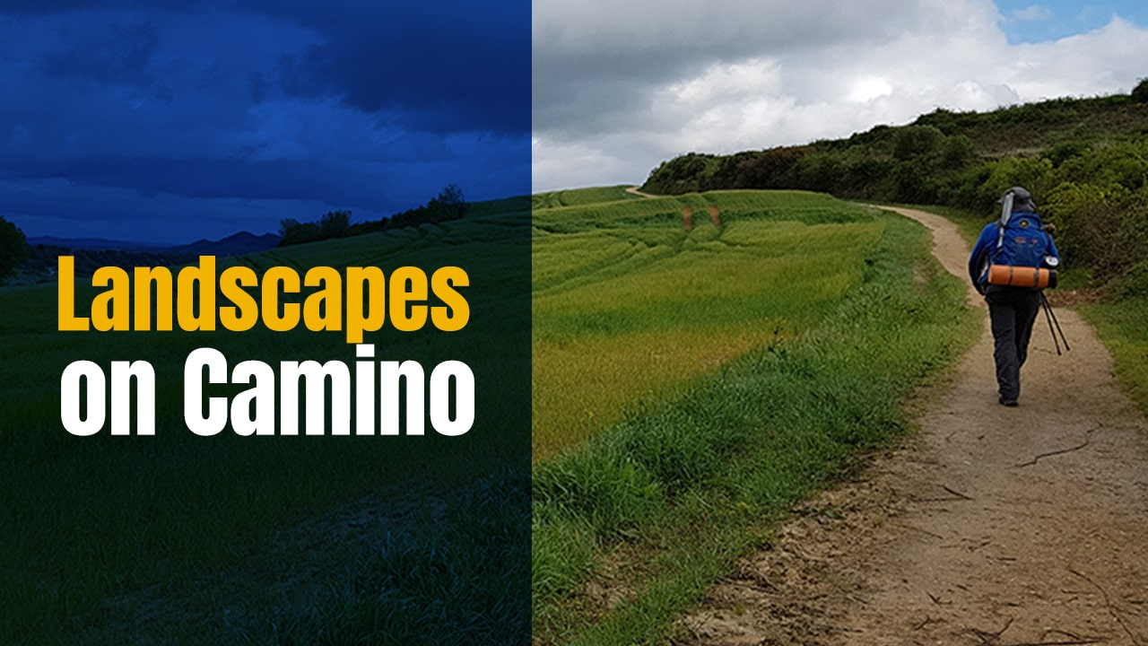 Landscapes on the Camino – Camino Frances